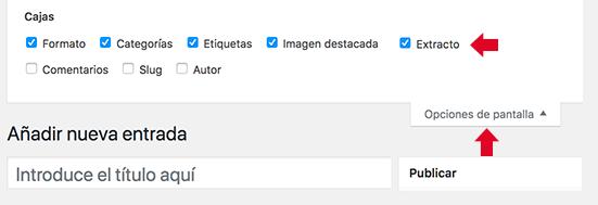 Opciones de pantalla para ver el campo extracto en entrada WordPress
