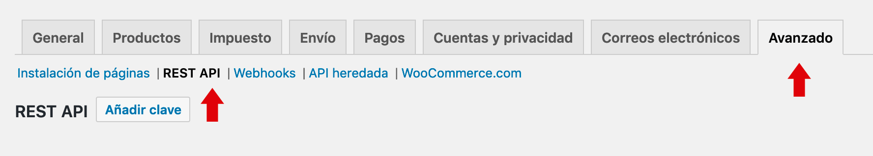 Activar REST API Woocommerce