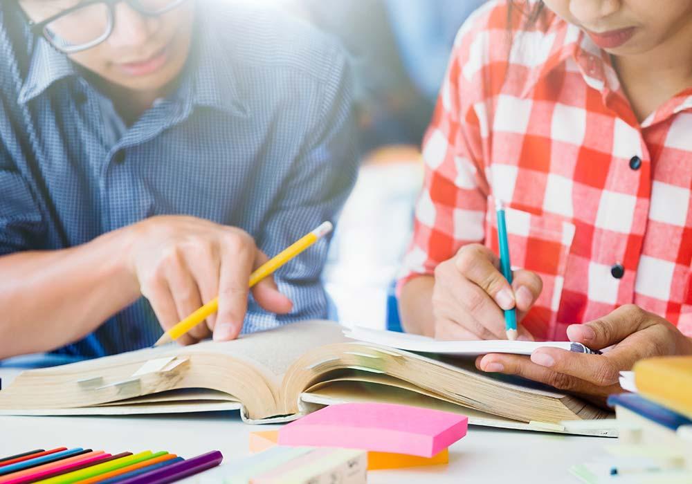 grupo estudos encceja 2019