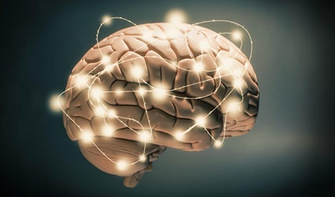dia del cerebro
