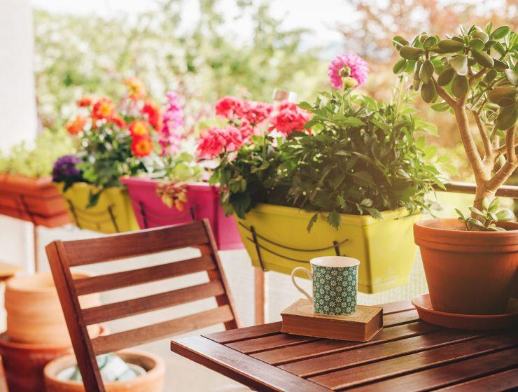 Balcones con plantas