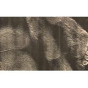 HUDINILSON JR - Xerox Action da série Exercício de me ver. Tamanho: 20 x 33 cm. Com carimbo no verso XEROX ACTION - Exercício de me ver - Hudinilson Jr. São Paulo - SP<br />A série documentava o artista reproduzindo seu corpo nu em máquina xerox, performance realizada na exposição Arte Xerox, em 1984, na Pinacoteca do Estado de São Paulo. A histórica mostra teve curadoria do próprio Hudinilson com o argentino Leon Ferrari. Com Certificado.
