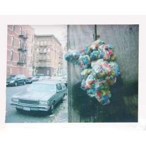 José Damasceno<br>Psicoplasma - Harlem NY<br>fotografia, edição 30/100<br>22 x 27 cm<br>2002<br>Acompanha certificado Galeria Luisa Strina.