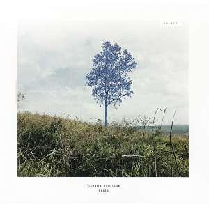 Marcelo Moscheta<br>Da Série Carbon Heritage 12.074<br>monotipia com papel carbono sobre impressão em papel fotográfico<br>52 x 50 cm<br>2012