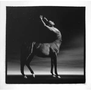 Milton Montenegro - Série Mithology com 10 fotos. Gelatin Silver Print; tiragem 1/6. Dimensões 41 x 41 cm.