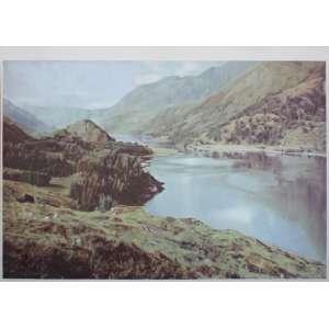 Rafael Carneiro ( 1985 ) Montanhas-paisagem - óleo sobre tela - 185 x 300 cm - 2011