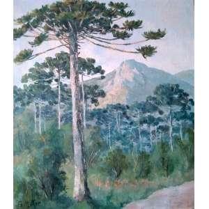 Guilherme Matter - Pinheiral - Óleo sobre tela - Medidas 60 x 50 cm - Assinado