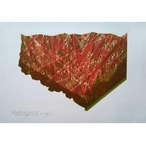 Maria Bonomi - Gravura - Medidas 35 x 50 cm - com dedicatória - 1988 - Ex coleção Wylma Sedys