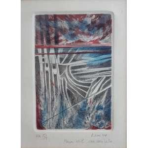 Renina Katz - Metal aguá tinta - P.A 5/5 - Medidas 20 x 15 cm