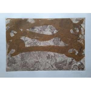 Tomie Ohtake - Gravura em metal P/A - Medidas 50 x 70 cm - assinada e datada de 1985