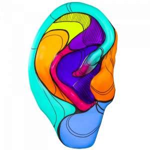 Obra: O Som das Cores <br/><br />Artista: Negritoo <br/><br />Inspiração do projeto: A idéia para o meu projeto foi o que representação das cores pode significar para um deficiente auditivo, desde a sinestesia dos sentidos em que a pessoa pode escutar um som e ver uma cor ou na importância das cores para auxiliar os deficientes no seu dia a dia, como o vermelho para PARE ou uma luz de advertência ou o amarelo para ATENÇÃO. <br/><br />Medidas orelha: 160x95x25cm (AxLxP) <br/><br />Medidas base*: 80x60x40cm (AxLxP) <br/><br />Materias: Fibra de Vidro, Tinta Acrílica e Verniz PU. <br/><br />Pode ser exposta em ambiente externo. <br/><br />*A base da escultura também faz parte desse lote. <br/><br />