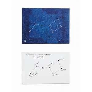 Totonho Laprovitera - acrílica sobre tela com aplicação de espinhos de mandacaru, 15,2 x 20,3 cm Constelação Setestrelo 2015