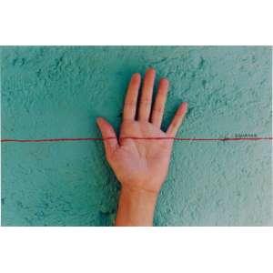 Adriana Varejão<br />Contingente - Linha do Equador 2000, C-print Ed. 44/100, assinada, datada, titulada e numerada no verso.<br />20 x 31 cm.