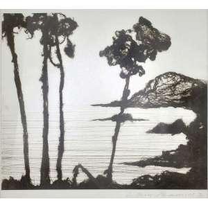 Vik Muniz<br />972 metros (Lago de Annecy), 1995, cópia fotografica de emulsão de prata Ed. 2/5, titulada, assinada, datada enumerada inferior direito.<br />49 x 58 cm.