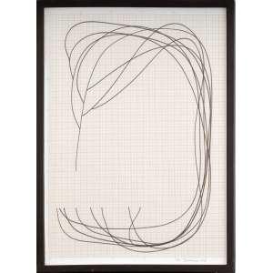 José Damasceno<br />Caneta hidrográfica sobre papel milimetrado, assinado e datado 2010, inferior direito.<br />42 x 30 cm.