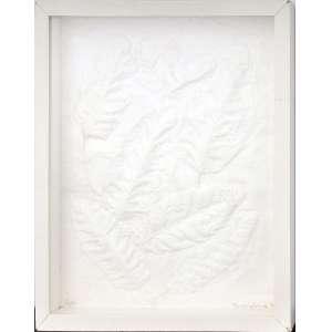 Frans Krajcberg<br />Relevo em papel artesanal, numerado 2/10 inferior esquerdo, assinado e datado 1984, inferior direito. <br />45 x 35 cm.