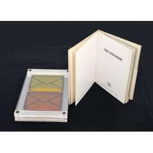 Tino Stefanoni<br /> Livro objeto 1972, assinado e numerado 119/200 no verso. <br />27 x 17,5 x 3 cm.