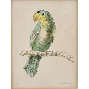 Candido Portinari <br />Papagaio, gravura a ponta seca e guache, numerada 5/15 inferior esquerdo e assinada inferior direito.<br />28 x 21 cm. Ex. coleção Copacabana Palace.(Sem moldura)