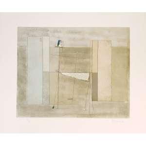 Mauro Casarin - Sem título. Litografia com textura - 62/65, 53,5x64 cm, 1999, ACID. Sem moldura.<br />