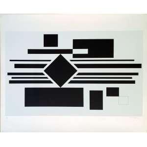 Mauro Reggiani - Sem título. Serigrafia - 88/130, 61x75 cm, sem data, ACID. Sem moldura.<br />