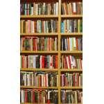 Golden Artes Leilões - Mega Leilão de Livros - Goldenartes