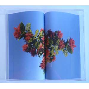 Ana Nitzan - Sublimação - Fotografia 13/50 - 27x32cm em moldura de acrílico - 2015 - Assinada no verso