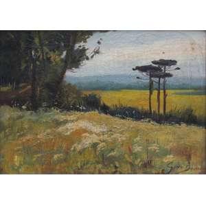 Gino Bruno - óleo sobre tela 30 x 42 cm Paisagem ass. CID