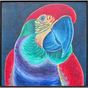 Claudio Tozzi - acrílica sobre tela 80 x 80 cm Papagalia ass. CID e verso