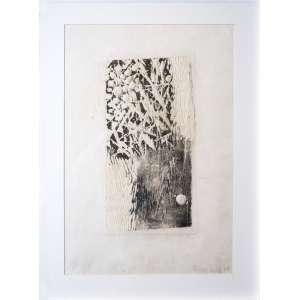 Frans Krajcberg - Composição - 52 x 35 cm - Relevo sobre papel - 1964 - Assinado e datado no c.i.d - Acomodado em moldura branca estilo caixa com paspatur em cartão.