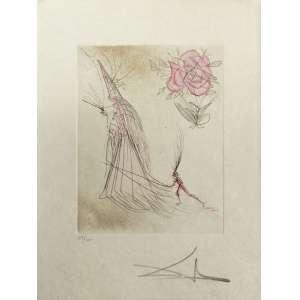 Salvador Dali - Spectre a la Rose - 38 x 28 cm - Gravura em metal sobre papel japon 39/100 - 1969 - Assinada a lápis. Da série Les Magiciens. Pulicada por Pierre Argillet. Reprod no catálogo Michler - Löpsinger, nº 309, 213, 315, 374.