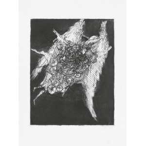 DAREL Valença Lins (1924 – 2017) - Sem Título<br>gravura em metal (água-forte) impressa s/ papel, ass. inf. dir. e n. XI-XII inf. esq.<br>MI 49 x 38,5 cm / ME 70 x 53 cm
