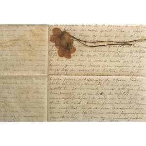 AUTOR NÃO IDENTIFICADO (1936 – 1945) - Cartas para Prestes<br>conjunto de 319 cartas endereçadas ao líder comunista Luiz Carlos Prestes (1898 – 1990), o Cavaleiro da Esperança, durante o período em que esteve encarcerado (de 1936 a 1945)<br>Os remetentes são familiares e amigos, dentre os quais os mais notórios são Olga Benário, sua filha Anita Leocádia e a mãe de Prestes, Leocádia, com quem manteve intensa comunicação<br>