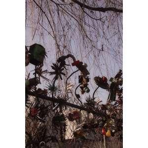 VAL DE ALMEIDA JÚNIOR - Nova York – 78 x 52 cm – Fotografia – Acompanha documento de autenticidade do artista e com dedicatória