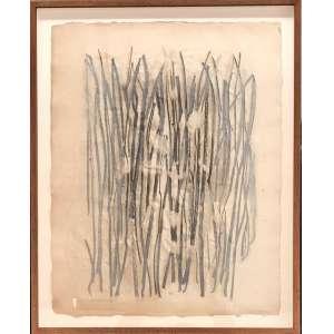"""Frans Krajcberg - """"Raízes"""" - 66 x 52 cm- Relevo e pigmentos sobre papel - Assinatura canto inferior esquerdo e Década de 60"""