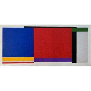 SUED, Eduardo - Geometria - serigrafia 38/100 - 70 x 153 cm - a.c.i.d. -Obs: sem moldura