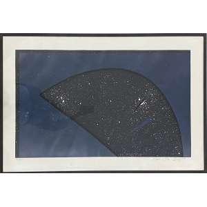 ANNA BELLA GEIGER - Sem titulo - serigrafia 66/100 - 78 x 111 cm - a.c.i.d.