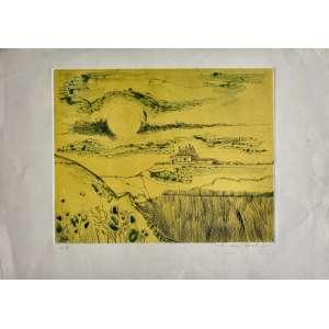 ALDEMIR MARTINS - Paisagem - gravura em metal P/A - 53 x 78 cm - a.c.i.d. 1975 - Sem moldura.