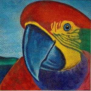 """CLÁUDIO TOZZI - """"Papagalia"""", óleo sobre tela, 40 x 40, assinado no canto inferior direito e verso."""