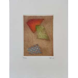 Arthur Luiz Piza - Orange dans le vert - gravura em metal com relevo - tiragem 69/70 - 38x28cm me - acid - s/ data