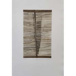 Sérvulo Esmeraldo - Trajectoire - gravura em metal com relevo - tiragem 27/50 - 25x15cm MI - medida com moldura 55x44cm - acid - s/ data