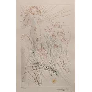 Salvador Dali - gravura - 46x32cm - tiragem 175/250 - acid