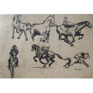 Jenner Augusto - Estudo Cavalos - nanquim - 20x29cm - acid - 1955