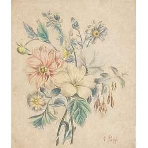 E.Paff - Flores - crayon – medindo 28x22cm.- assinado no canto inferior direito.