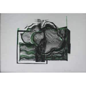 Maria Bonomi, Abstrato em Verde, Litografia, 50 alt X 70 larg (cm), acid, 19/33