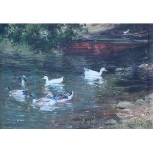 Joao Bosco Campos, Lagoa com Patos, Óleo sobre tela, 50 alt X 70 larg (cm), acid e verso, Ano: 2003