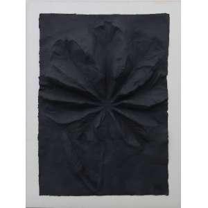Franz Krajcberg - Relevo de papel negro, papel, 85 x 60 cm, sem data, com carimbo de assinatura no canto inferior direito.