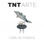 TNT Galeria de Arte - Leilão de Arte .Múltiplos