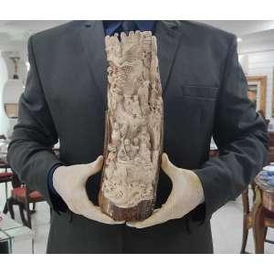 MAMMOTH IVORY CARVING<br />37 X 13 X 7 CM. <br />PESO: 1,223 KG.<br />Presa marfim de Mamute, extinto há 15.000 anos, fossilizado.<br />Cotação internacional média: vide fotos<br />Consta de finíssima talha:<br />OITO IMORTAIS TAOÍSTAS: HAN XIANG ZI, com flauta; LAN CAI HE com cesto de flores; <br />ZHONGLI QUAN o líder com duas ventarolas; HE XIAN GU com flor de Lótus; LU DONG BIN com espada; LI TIE GUAI com muleta de ferro; CAO GUO JIN com uma tábua de jade imperial; ZAN GUO LAO tubo com penas de Fênix. <br /><br />____SOBRE O ENTALHE:<br />A longa história do marfim esculpido remonta aos tempos antes das dinastias Qin e Han. Nas dinastias Ming e Qing o nível técnico e artístico atingiu um clímax. Durante o período da República da China, a escultura de marfim era uma escola independente incomparável. A essência desse ofício permanece, até hoje, graças à transmissão de mestre-discípulo nas oficinas de famílias que vivem do oficio da escultura. <br />Com a proibição da importação de marfim africano e o enriquecimento da população chinesa, as grandes obras de marfim - símbolo de status - estão se tornando no Oriente cada vez seletas e de valores elevados.<br />___SOBRE O MARFIM DE MAMUTE:<br />A partir do ano de 1989, devido a leis internacionais de preservação dos elefantes, o marfim de mamute, originário das regiões isoladas na Sérvia e Ártico passou a ser garimpado durante os curtíssimos meses de verão, por caçadores de marfins fósseis, que enfrentam ventos gelados e águas frias, procurando as presas que aparecem com o derretimento do gelo. A maior parte do marfim tem uma coloração azulada ou acastanhada devido a ter ficado enterrado em solo rico de minerais por milhares de anos. O marfim sólido, com pouca ou nenhuma descoloração, como o usado nesta escultura, tem preço muito mais elevado. <br />Após as presas de mamute serem encontradas, são transportadas para a China continental onde especialistas e requintados escultores de marfim esculpem primorosas cenas artí