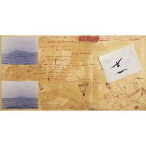 ARTUR BARRIO - O Paraíso Não Tem: Infra-Estrutura . Caneta hidrográfica e fotografias sobre papel. Assinado e datado 1998/1999 centro superior. 81 x 157 cm. R$ 30.000 / 40.000