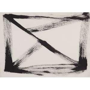 """AMILCAR DE CASTRO<BR>""""""""Sem titulo""""<br>Nanquim sobre papel.<br>Ass. no verso.<br>56 x 76 cm.<br>Com certificado de autenticidade do Instituto Amilcar de Castro.<br>"""